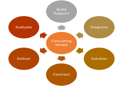 consulting-model